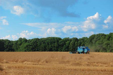 A blue combine working in a field