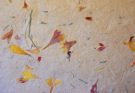 A photograph of homemade paper with bits of flowers and leaves in it Stok Fotoğraf