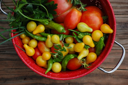 Salsa Ingredients in a Red Colander on  a Picnic Table