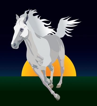 whitehorse: Whitehorse