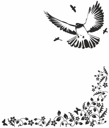 Black  dove Vector