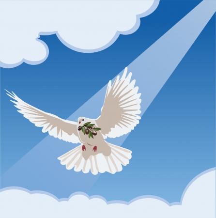 sfondo nuvole: colomba con ramo d'ulivo Vettoriali