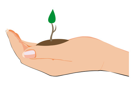 avuç: filiz gelen toprak bir avuç tutan kadın eli