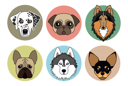 pug puppy: vector icons of different breeds of dogs