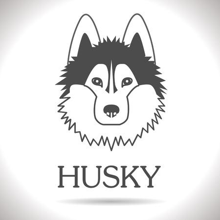 huskies: black vector Huskies  Illustration