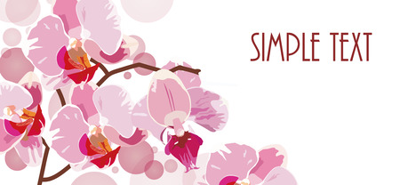 horizontal background with red orchids