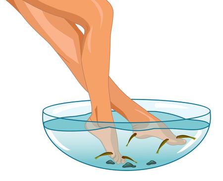 piernas de mujer: Piernas femeninas en el ba�o y un pez Vectores