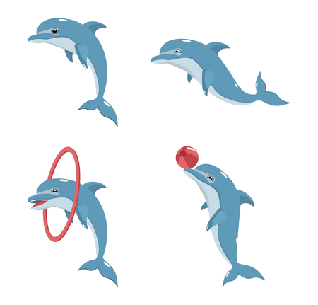 Four vector dolphin on a white background
