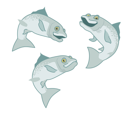 salmon. the fish print on white background. vector