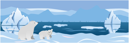 two white bear in the background Arctic ice. vector illustration Vettoriali