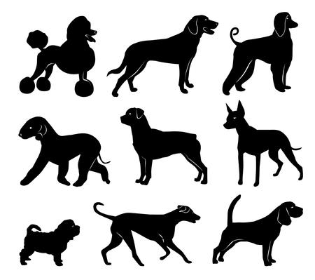 set of dog silhouettes. vector illustration Illustration