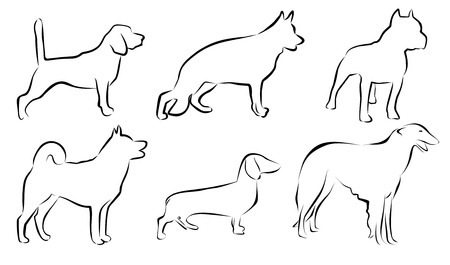 Set lines of dogs. Vector 2D illustration. Isolation on white background