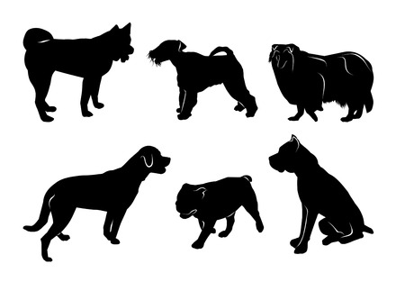 set of black silhouettes of different breeds of dogs. vector isolated on white background Illustration