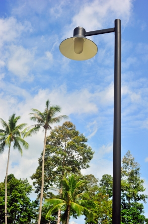 An outdoor streetlight with coconut trees and beautiful sky as background