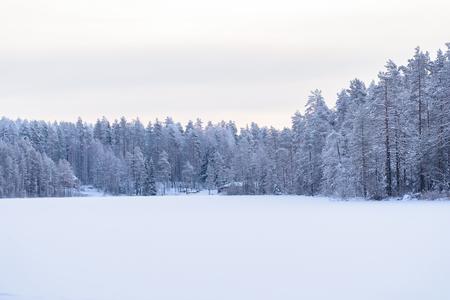 Las na lodowym jeziorze pokrył się ciężkim śniegiem i niebem w sezonie zimowym w Laponii w Finlandii.