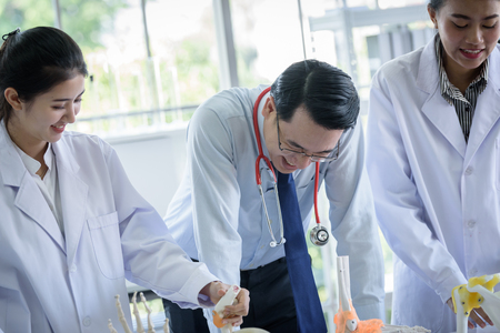 Asian teacher has teaching to student about science and anatomical in laboratory 免版税图像