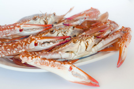 Cooked crabs photo