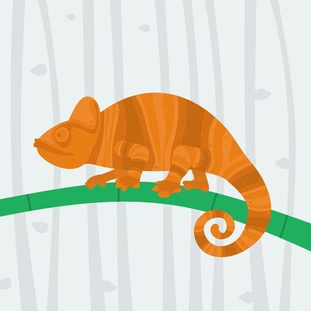 cameleon: Chameleon sitting on a branch eps 8