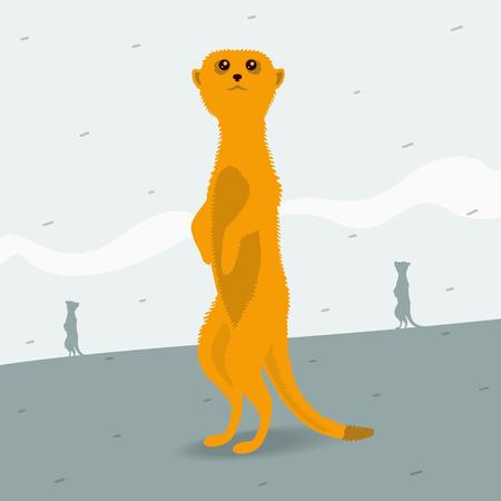 meerkat: The Meerkat looking for space eps 8