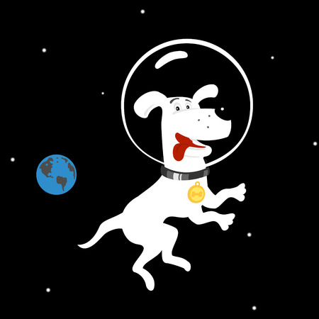 dog isolated: Dog in Space file format