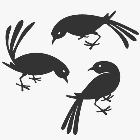 Group of Birds Vector Illustration