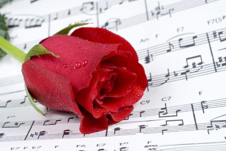 Red rose rests on piano sheet music photo