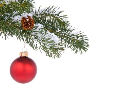 Red Christmas tree ornament hangs from a pine tree branch on a white background