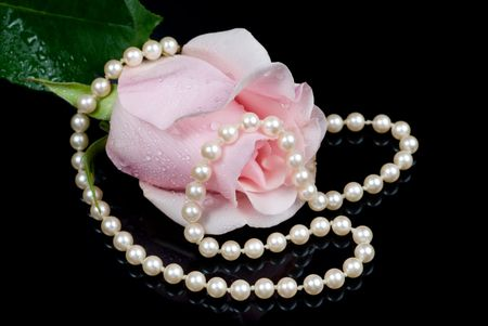 misted: A pink misted rose with a string of pearls reflects off a black surface.