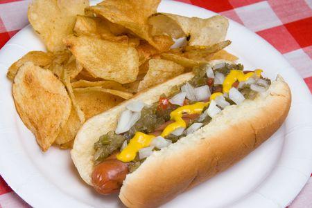 perro comiendo: A scrumptious parrilla para perros calientes con entusiasmo, cebollas, mostaza y ketchup descansa sobre una mesa de picnic a la espera de ser consumidos.