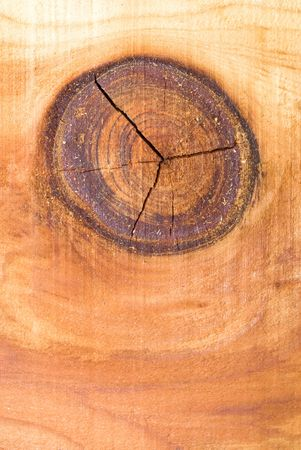 carpentery: a wood knot and redwood board shows the natural patterns in this wood type. Stock Photo