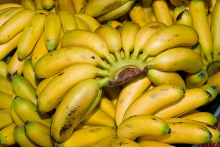 Bunches of fresh  bananas at a local farmers market Stock Photo