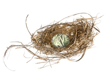 An money egg in its nest waiting to mature and grow into a retirement portfolio Stock Photo - 4369404