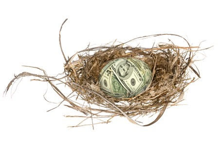 An money egg in its nest waiting to mature and grow into a retirement portfolio. Stock Photo - 4369403
