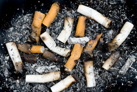 unhealthy living: Burnt cigarette butts and ashes from an ash tray