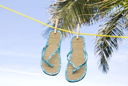 sandal tree: Un par de flip flops secado en una brisa tropical en una Clothesline.