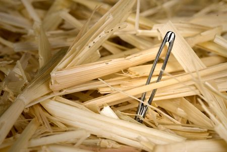 A shiny, metallic needle found in a haystack. photo