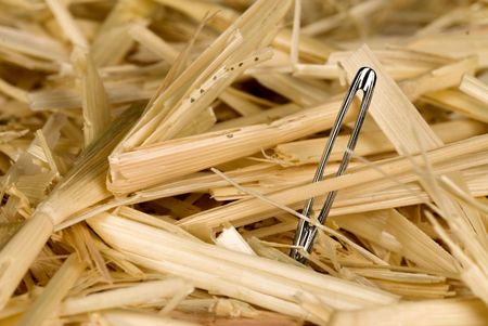 A needle is found in a haystack. photo