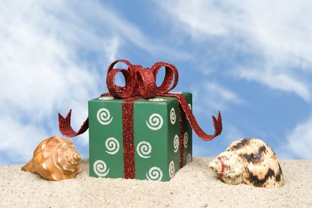 inference: A present and seashells on the beach for a tropical Christmas inference.