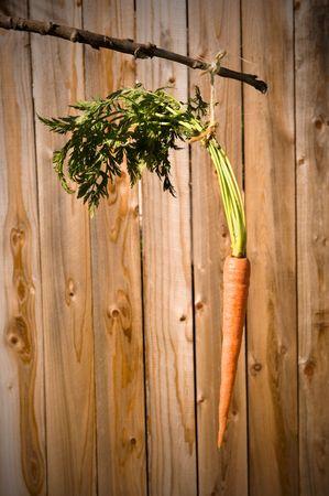 Een dangling wortel op een stok.