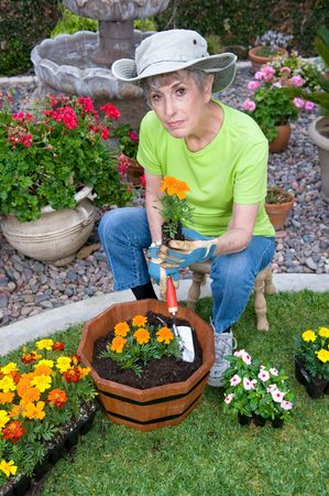 A senior adult relaxes in her backyard garden by planting fresh flowers in a wooden planter. Stock Photo