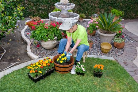 A senior adult plants flowers in a wooden flower pot in her backyard. Stock Photo - 7070048