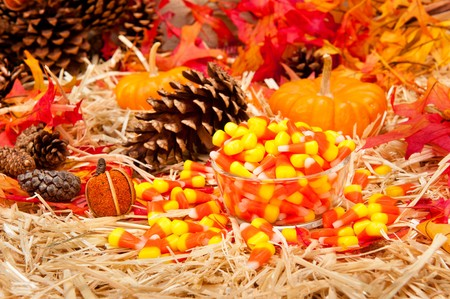 An Autumn holiday theme with pumpkins, corn, pine cones, autumn leaves and candy on a hay base with focus on the candy. photo