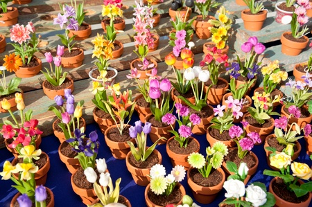 An assortment of colorful household potted plants on display and for sale during a sunny day. photo