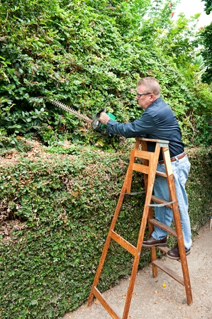 pruning: A man conducting his chores by trimming vines along a wall.