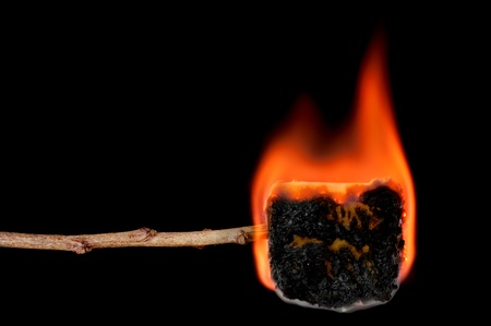 charred: A burning marshmallow on a stick shows it transform to a carmalized, charred delicious treat.