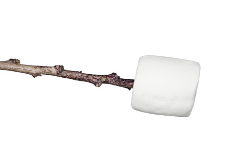 chewy: A sweet, soft, chewy raw marshmallow on a stick isolated on white.