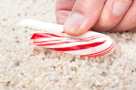 A man picks up a dropped candy cane that is stick to carpet fibers.