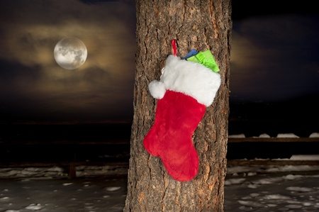 A Christmas stocking hanging on the trunk of a pine tree with snow and an amber glowing moon and sky. photo