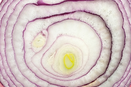 Beautiful pattern of the inside halve of a fresh, red onion