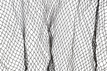 in net: A dark green fishing net against a white background.